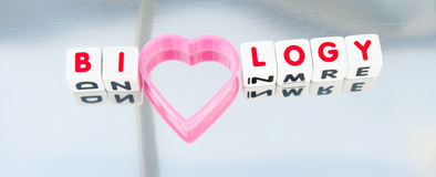 Love for biology. Text 'biology' in red uppercase letters inscribed on small white cubes with letter 'o' replaced by a pink heart, gray background Stock Images