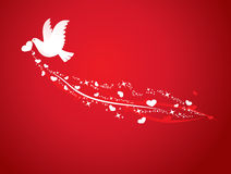 Love bird. White dove with the stars in the heart in one's mouth Royalty Free Stock Photography