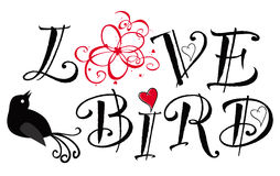 Love bird Royalty Free Stock Images