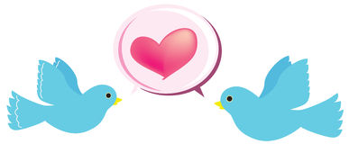 Love bird. The two cute love bird Royalty Free Stock Photography