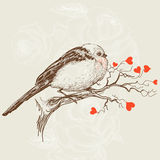 Love bird. Sitting on a tree branch with hearts as flowers Royalty Free Stock Photo