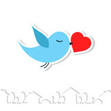 Love bird. Stock Image