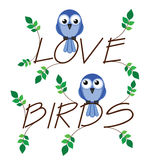 Love bird. Twig text with two lovesick birds Stock Photo