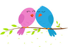 Love bird on a branch. Illustration Love bird on a branch isolate on white Stock Image