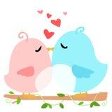 Love bird on branch white background  Stock Photo
