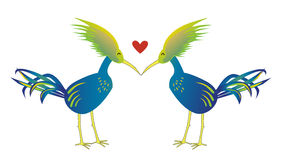 Love bird isolate background Stock Photography