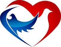 Love birds Stock Images