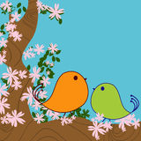 Love birds. Cute birds and blossom tree background Royalty Free Stock Photography