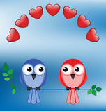 Love birds. Two love birds sat on a branch Stock Photos