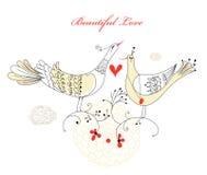 Love birds Stock Image