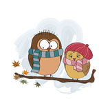 Love birds. On the branch Royalty Free Stock Photography