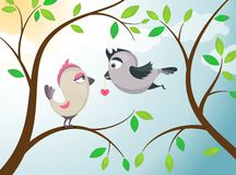 Love birds. Stock Photography