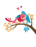 Love birds. Illustration of two hugging birds on a tree branch Stock Image