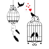 Love birds and cages Royalty Free Stock Photos