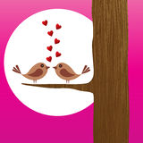 Love Birds - card Stock Photography