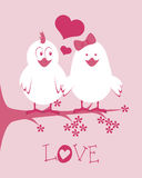Love birds design. Over pink background vector illustration Royalty Free Stock Photos