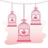 Love  birds Stock Photography