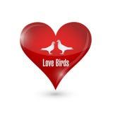 Love birds heart illustration design Royalty Free Stock Photo
