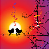 Love, birds kissing on branch Royalty Free Stock Image