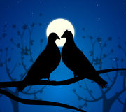 Love Birds Means Boyfriend Affection And Fondness. Love Birds Representing Wildlife Passion And Devotion vector illustration