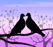 Love Birds Represents Compassion Passion And Heart. Love Birds Meaning Compassionate Romance And Fondness Stock Photo