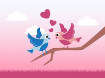 Love birds on Valentine`s Day. Love birds sitting on a branch of a tree on a background of a pink sky, clouds and grass Stock Photo