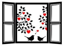 Love birds in the window Stock Photo
