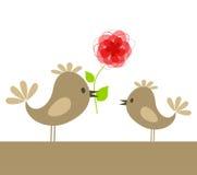 Love of birds8 Royalty Free Stock Image