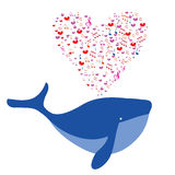 Love the blue humpback whale. Stock Photography