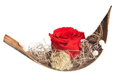 Love boat with red rose Royalty Free Stock Photography