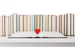 Love books Royalty Free Stock Photography