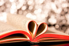 Love books Royalty Free Stock Photos