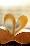 Love books Stock Photography