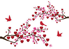 Love branches Stock Photos
