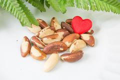 Love Brasil nuts. Brasil nuts, bottle of oil and green leaves Stock Photos