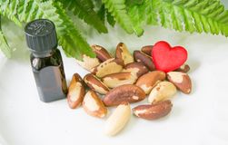 Love Brasil nuts. Brasil nuts, bottle of oil, green leaves and a heart Royalty Free Stock Image