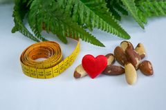 Love brasil nuts. Brasil nuts, measurement tape and green leaves Royalty Free Stock Photos