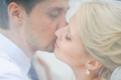 Love the bride and groom are covered with a veil and kiss Stock Photo