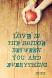 Love is bridge quote Royalty Free Stock Photos