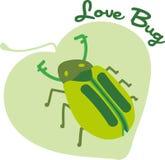Love Bug Beetle Royalty Free Stock Photography