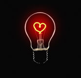 Love Bulb Royalty Free Stock Image