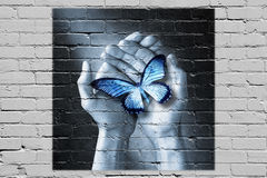 Love Butterfly Hands Graffiti Care  Royalty Free Stock Image