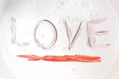 Love, Caption word love Red Royalty Free Stock Image