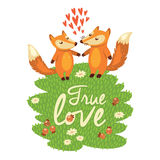 Love card with cute foxes in vector Stock Image