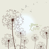 Love Card With Dandelions Royalty Free Stock Images