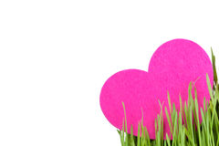 Love card decorated with heart on green grass Stock Image