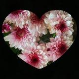 Love card design royalty free stock image