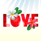 Love card with Frangipani flowers Stock Images