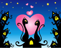 In love cats. Sittings at night on a roof Royalty Free Stock Images