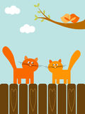Love cats. Birds and cats in love. saint Valentine illustration